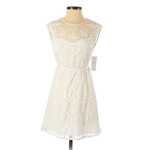 Zara White Open Back Fit and Flare Lace Dress